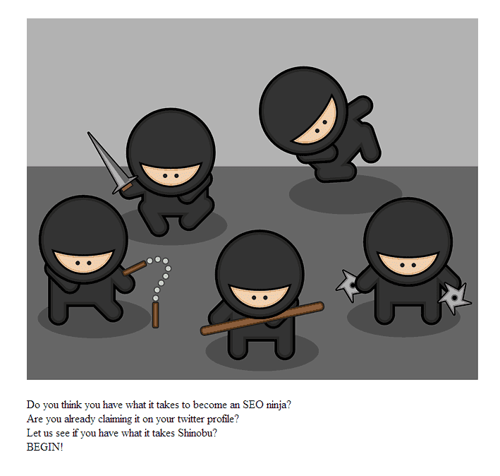 An image from the oap.ninja SEO challenge