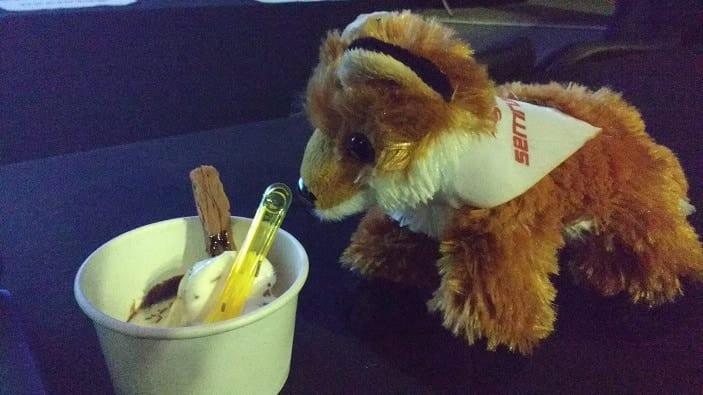 A photo of a small tub of icecream and an SEMrush fox teddy